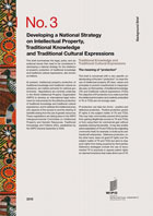 Front cover of Developing a National Strategy on Intellectual Property, Traditional Knowledge and Traditional Cultural Expressions