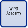 WIPO Academy