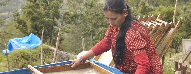 Resultado de imagen de papel lokta nepal aveda