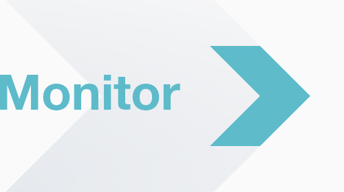 Monitor: Madrid e-services
