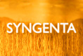 Syngenta Video Interview