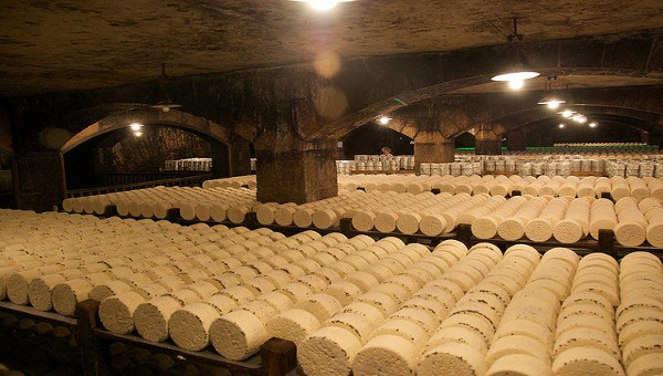 Roquefort cheese maturing in a natural cave