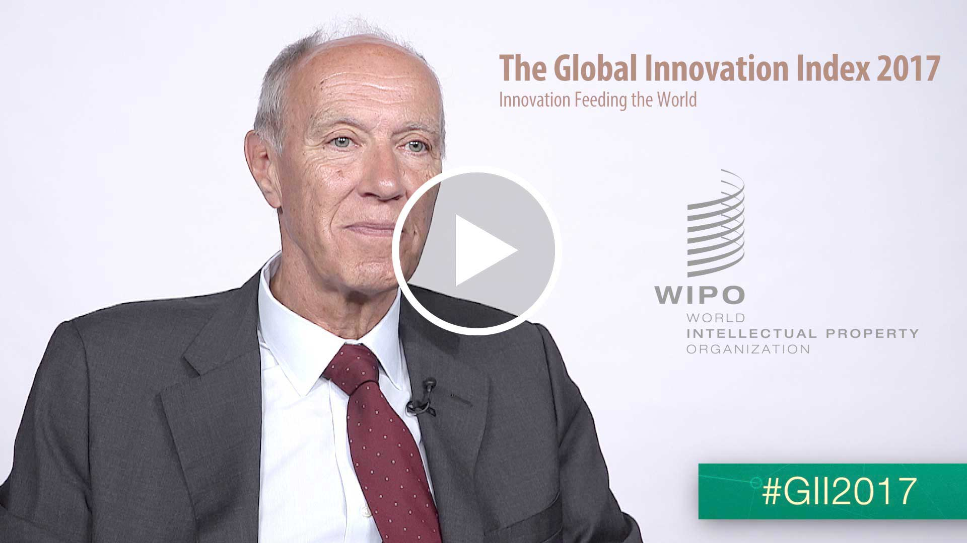 Francis Gurry, WIPO Director General